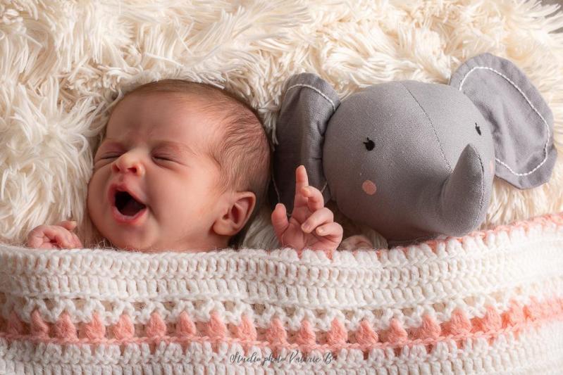 Photographe bebe aizenay 1
